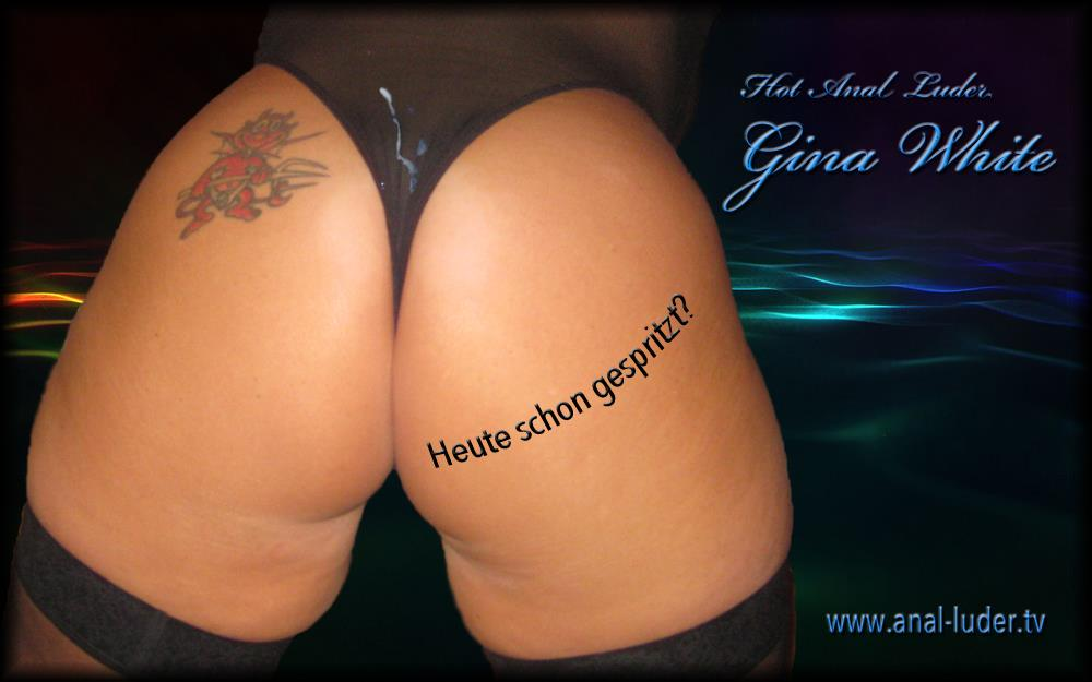 Analluder Gina White
